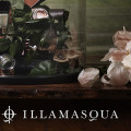 Illamasqua on Discover Beauty